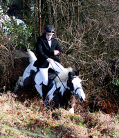 Jockey Sean Flanagan comes to grief hunting with the Bree Foxhounds @ Davidstown. January 19th 2011