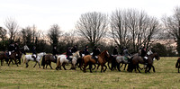 Westmeath Foxhounds @ Streamstown. January 29th 2011
