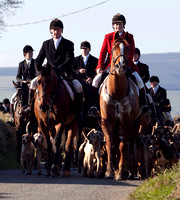 Wexford Foxhounds @ Clonroche. March 1st 2011