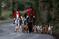 KILDARE FOXHOUNDS, HOLLYWOOD, JANUARY 21st