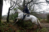 SHILLELAGH & DISTRICT HUNT, CRAB LANE, MARCH 4th