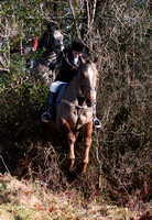Bree Foxhounds @ Davidstown. January 19th 2011