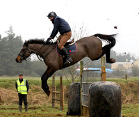 Scarteen gate jumping, Garryspillane, January 23rd 2011